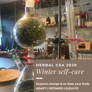 Winter Self Care CSA